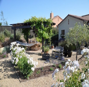 Back Yards